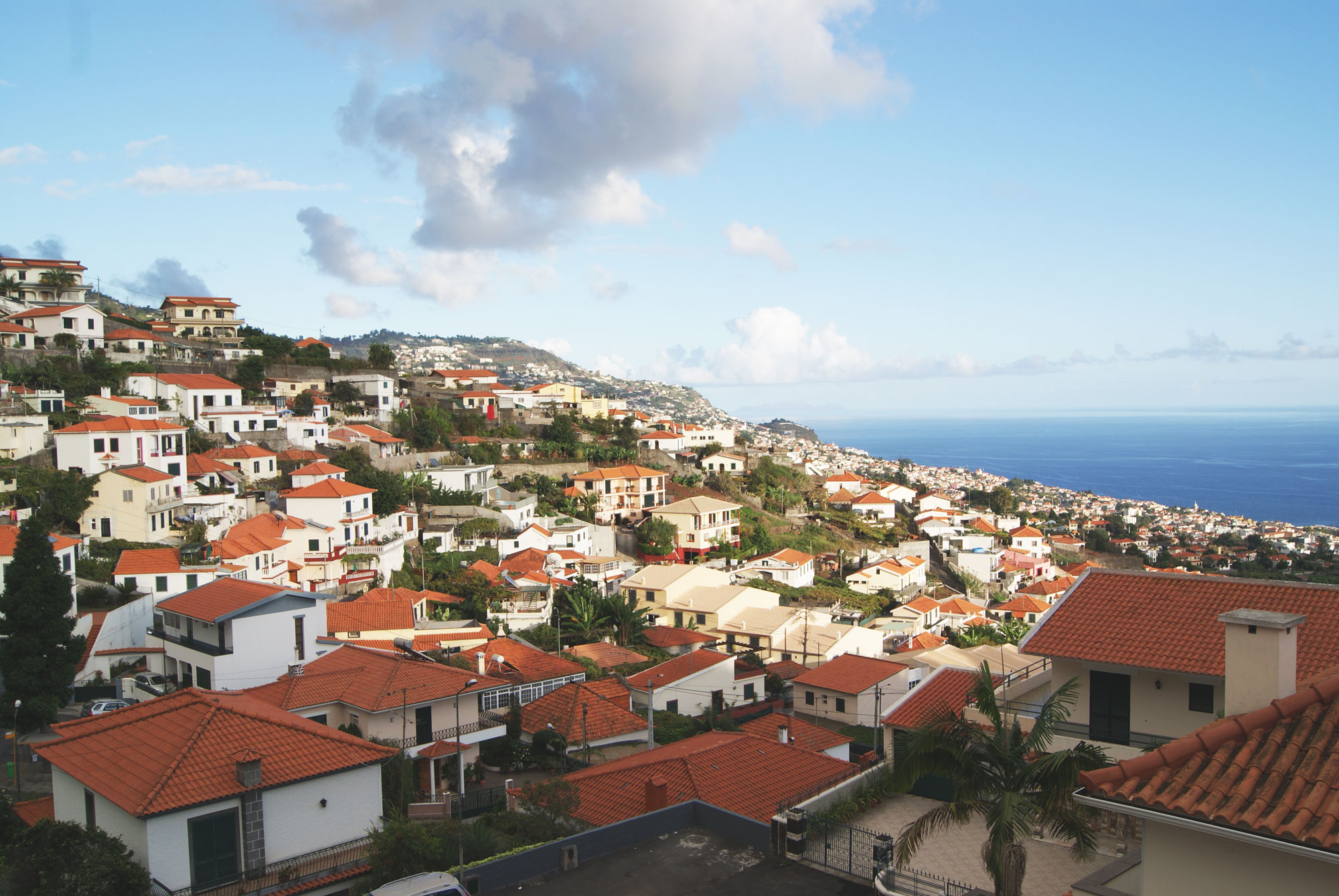 tippy-madere-funchal3