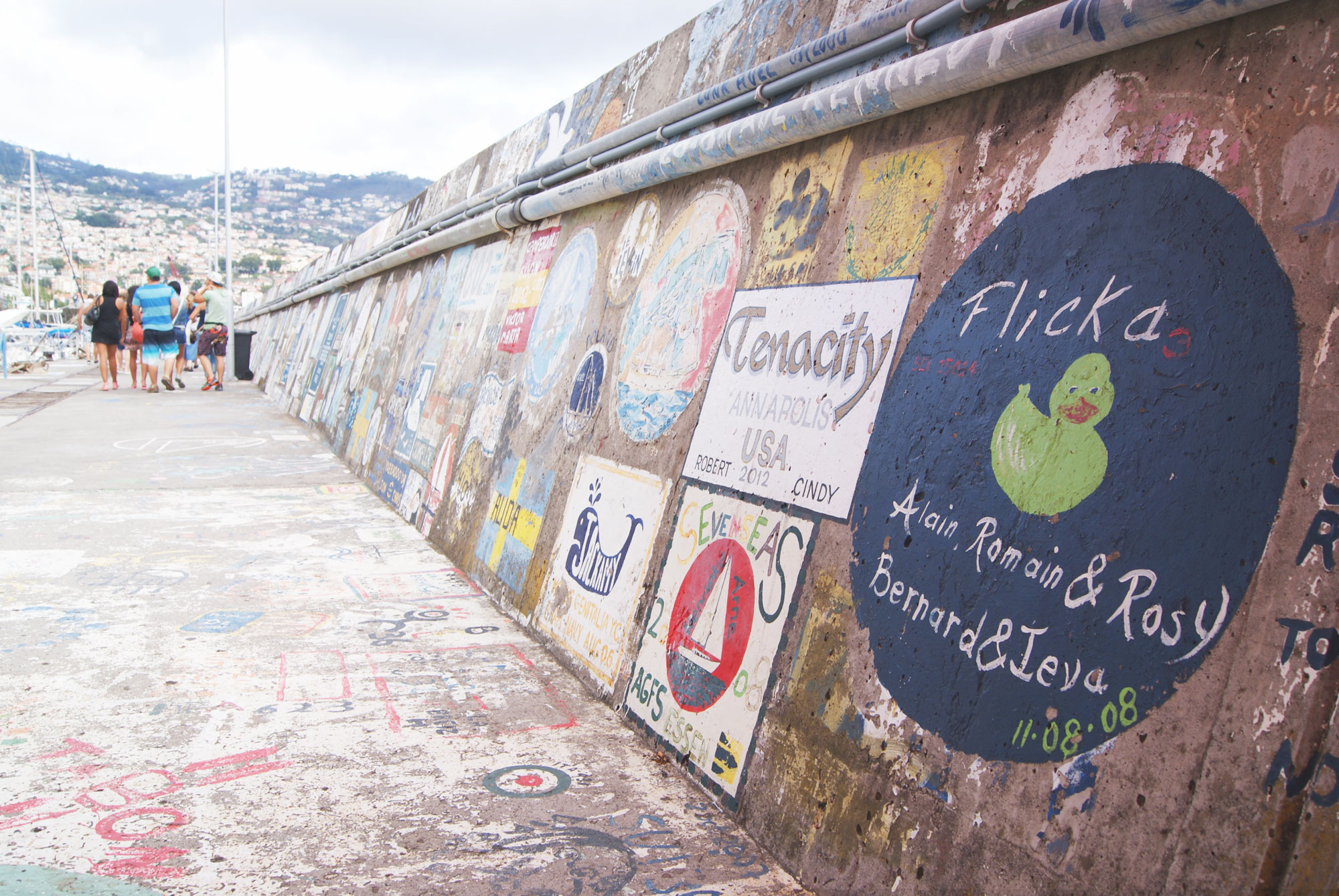 tippy-madere-funchal13