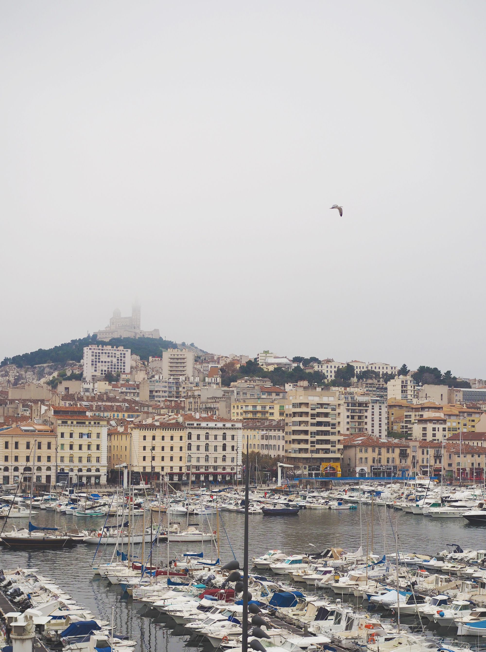 Marseille, Provence / Tippy.fr