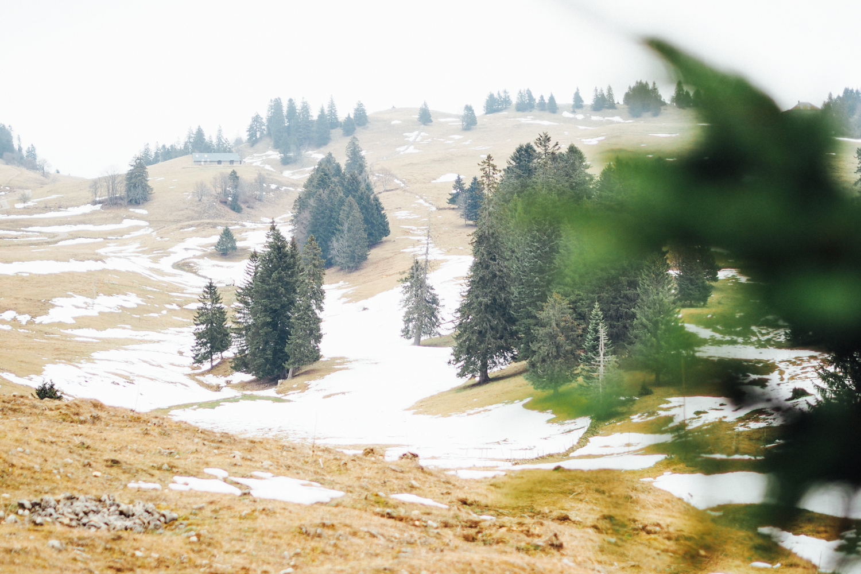La Rippe, Jura Suisse / Tippy.fr