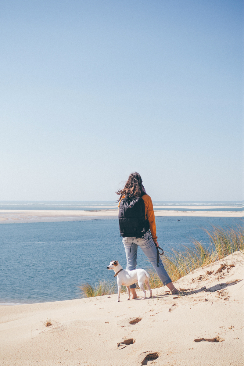 La Dune du Pilat / Tippy.fr