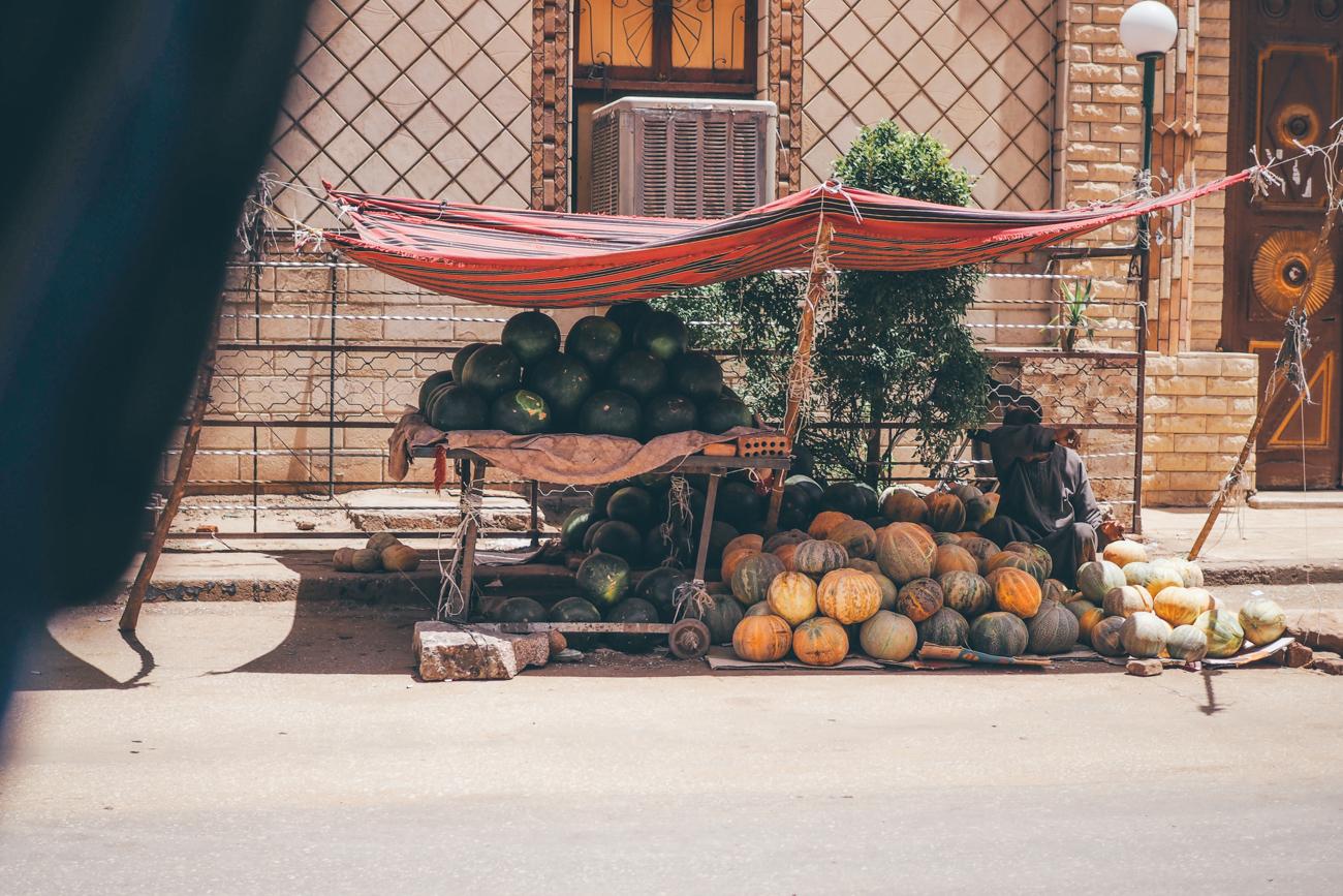 L'Égypte avec Voyageurs du Monde / Tippy.fr - Être plongé au coeur de l'effervescence d'Edfou un jour de marché...