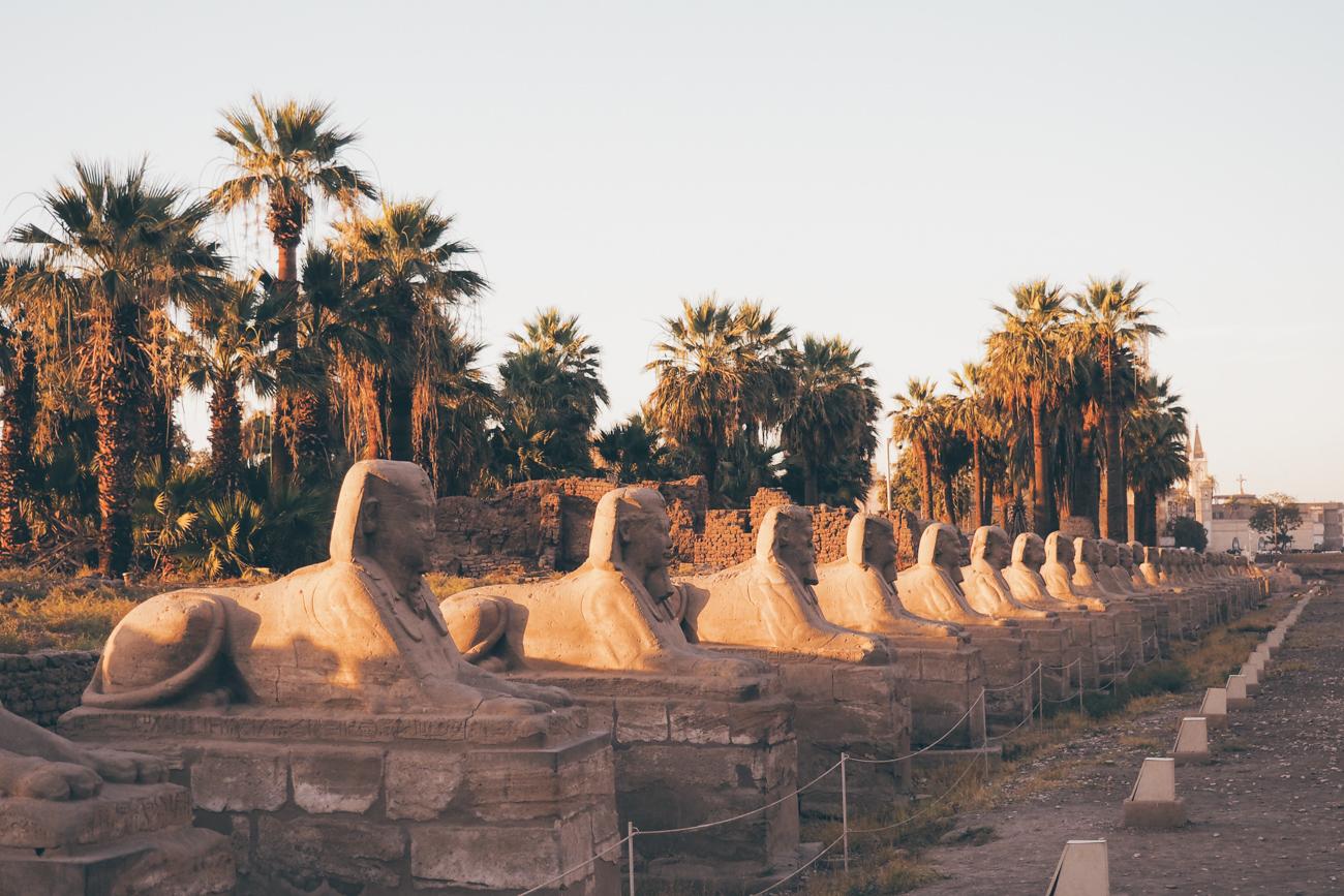 L'Égypte avec Voyageurs du Monde / Tippy.fr - Allée des sphinx, Louxor